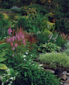 Designing with curved terraces. Tall 'Purple Candle' astilbe (Astilbe chinensis 'Purpurkerze', Zones frames the view. Hillside Garden, Sloped Garden, Rain Garden, Garden Oasis, Garden Show, Dream Garden, Part Shade Flowers, Landscape Design, Garden Design
