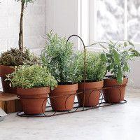Herb Basket<3
