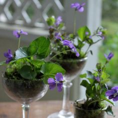 Violet centerpiece made with drinking glasses.