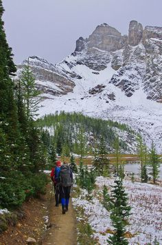 Hiking towards Wonder Pass, Mt Assiniboine Provincial Park Backpacking Canada, Canada Travel, Wild Camp, Mountain Pictures, Visit Canada, Happy Trails, Day Hike, Amazing Destinations, Amazing Nature