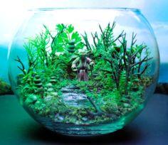Yoda Dagobah Swamp Garden - Terrarium / Diorama