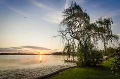 Lake Pupuke, Takapuna, Auckland where Sinclair walked. It's a peaceful place. Waiheke Island, Best Sunset, All Things New, Peaceful Places, The Beautiful Country, New Zealand Travel, Shopping Day, Auckland, That Way