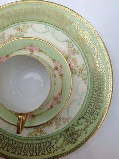 KPM teacup, Meito China, Tirschenreuth botanical floral plate
