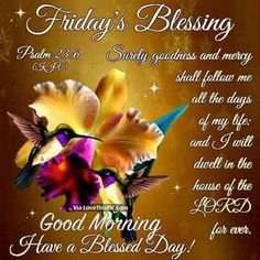 Have a Blessed Friday | Friday's Blessing, Good Morning, Have A Blessed Day Pictures, Photos ...