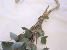 how to make a garland...eucalyptus tree leaves!!!  -- Fresh & Dried Eucalyptus can be purchased here & 10% of the profit goes to charity: http://www.exoticanimalproducts.com/Eucalyptus/