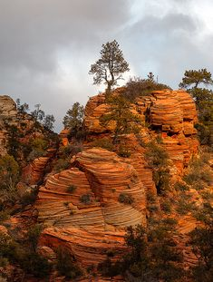 Zion National Park; photo by Rick Lundh