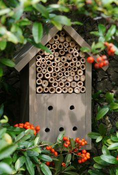 Wooden Insect Box - supposed to attract beneficial insects (such as ladybugs) to your garden. Insect Box, Pine Garden, Bug Hotel, Mason Bees, Bee Boxes, Birdhouse Designs, Garden Boxes, Garden Ideas, Garden Projects