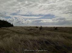 Allochtonka - życie ekspatki w Holandii: Dania - majówka nad zimnym morzem - cz. 2 Jacuzzi, Denmark, Whirlpool Bathtub