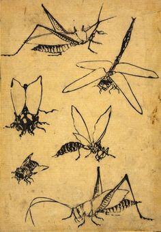 "Woodblock print, page from the ""Mangura"".Katsushika Hokusai."
