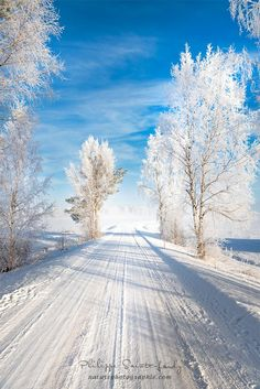 White Morning in Finland by Philippe Sainte-Laudy on 500px ❄️❄️