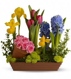 Spring Favoires     $52.95