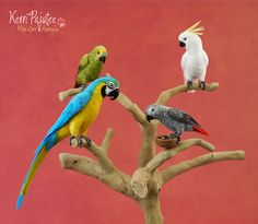 Dollhouse Miniature Parrot grouping by the incredible Kerri Pajutee.