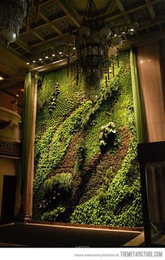Vertical garden-a friend of ours in Alabama has created several vertical gardens - some with edible plants...both a work of art and a food source, particularly if you are short on space.
