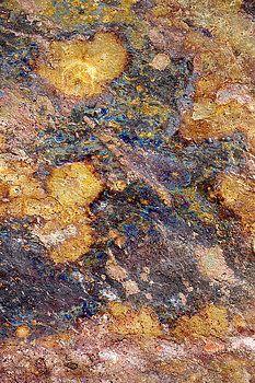 Donald  Erickson -  Flat Background - Slate Tile