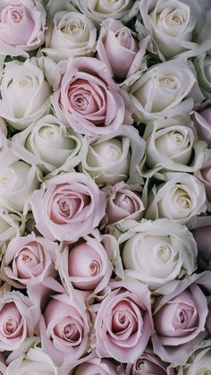 Vintage Pink Roses ★ Download more floral iPhone Wallpapers at @prettywallpaper
