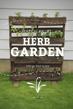 Learn how to make your own vertical pallet herb garden.