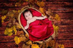 Baby posing Baby Poses, Snow White, Disney Characters, Fictional Characters, Disney Princess, Photography, Art, Art Background, Photograph