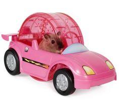 Critter Cruiser Hamster Racer Set