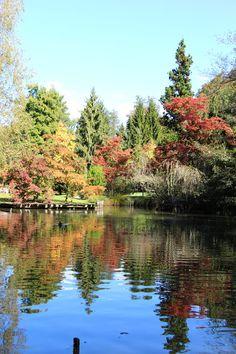 Autumn in Arboretum Volčji Potok, Slovenia