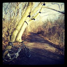 Dieter's Radtouren Mountain Biking, Country Roads, Bike, Bike Rides, Bicycle, Bicycles