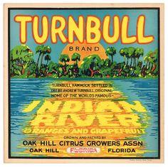Cocoa Florida Mity-Fine Orange Citrus Fruit Crate Label Vintage Art Print