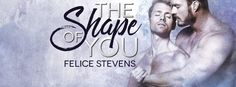 Lelyana's Book Blog: ARC REVIEW :  The Shape of You by Felice Stevens