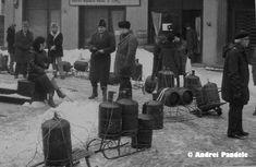 Andrei Pandele – fotografii interzise din perioada comunista | dawn's song Bbc, Panda, Lifestyle, Pandas