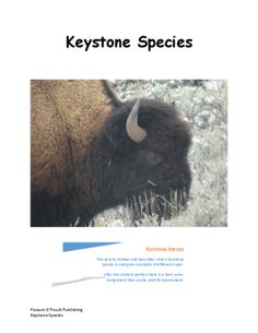 Keystone Species Activity from Possum O'Pouch Publishing on TeachersNotebook.com (4 pages)