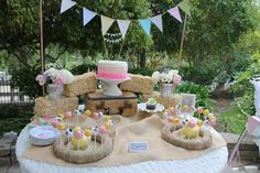 """Photo 2 of 42: Vintage Girly Western Petting Zoo / Birthday """"Ruby's 1st Birthday.. Petting Zoo Theme"""" 