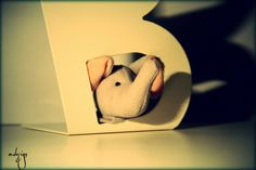 creative art photography