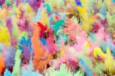 People throw colored powder during the Holi festival in Berlin on July 29. Holi, also known as the festival of colors, is celebrated in India & other Hindu countries and typically marks the end of winter. - MSN