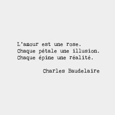 Love is a rose. Every petal an illusion. Every thorn a reality. Charles Baudelaire French poet