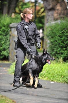 We all love the Police The trainers raise and train Police dog breeds in a particular way so they can serve in the police. Military Working Dogs, Military Dogs, Military Police, Usmc, Police Dog Breeds, Police Dogs, Cop Dog, K9 Officer, Police Humor