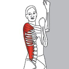 what muscles do lunges work  stand with your feet hip