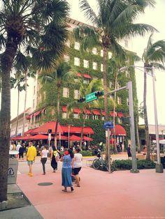 Search Miami Real Estate Listings Sunny Isles Miami Beach – Miami Just Listed Real Estate Search Engine South Beach, Miami Beach, Lincoln Road, Photo Walk, Real Estate Search, Real Estate Sales, Florida, Street View, Island