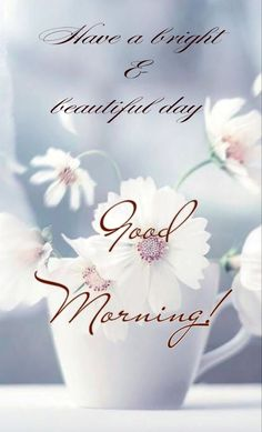 Good Morning Flowers Gif, Good Morning Nature, Good Morning Beautiful Quotes, Good Morning Inspiration, Good Morning Images, Beautiful Flowers Images, Flower Images, Good Morning Greetings, Good Morning Wishes