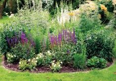 Flora, Plants, Gardening, Lawn And Garden, Plant, Planets, Horticulture
