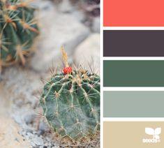 cactus tones, mylos