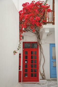 Great red door with bougainvillea above. - Mykonos, Greece
