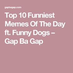 Top 10 Funniest Memes Of The Day ft. Funny Dogs – Gap Ba Gap