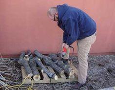 MOTHER EARTH NEWS Grows Shiitake Mushrooms - Grow It - MOTHER EARTH NEWS
