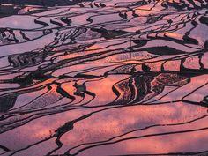 Honghe Hani Rice Terraces Yuanyang County, Yunnan
