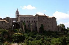 Il palazzo dei Papi visto da Valle Faul