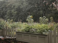 miss shaw's  children's garden in brooklyn, the oldest continuously operating childrens garden in the world