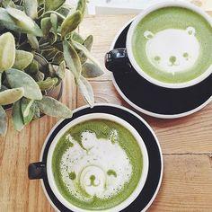 Morning matcha time @bibble&sip so cute! www.zengreentea.com.au #matcha #superfood