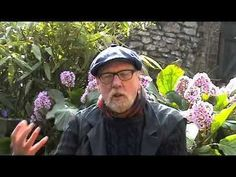 Herbaceous by Paul Evans - YouTube