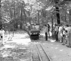 DDR Pioniereisenbahn in Dresden,DDR Pioniere,GDR Pioneer | Flickr - Photo Sharing!
