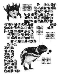 Nicholas Di Genova - Fauna of the Polar Regions | Galerie Dukan