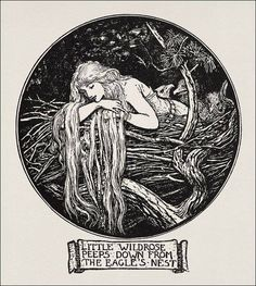 cheveux qui sortent du cercle // Little Wildrose, illustration by Henry Justice Ford, from the Crimson Fairy Book edited by Andrew Lang, 1903 Art Inspo, Kunst Inspo, Art And Illustration, Cartoon Illustrations, Fantasy Kunst, Fantasy Art, Potnia Theron, Art Nouveau, Fairytale Art