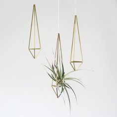Brass Himmeli Air Plant Holder/Prism Ornament by AMradio modern indoor pots and planters